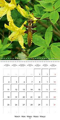 The secret World of Insects (Wall Calendar 2019 300 × 300 mm Square) - Produktdetailbild 3