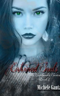 The Soulmates Series: Entwined Souls (The Soulmates Series, #2), Michele Gantz
