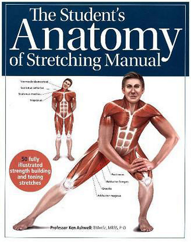 The Students Anatomy Of Stretching Manual Buch Portofrei