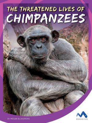 The Threatened Lives of Chimpanzees, Megan Blakemore