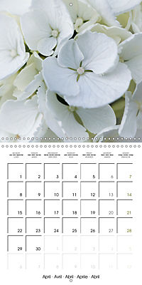 The White Garden (Wall Calendar 2019 300 × 300 mm Square) - Produktdetailbild 4