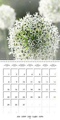 The White Garden (Wall Calendar 2019 300 × 300 mm Square) - Produktdetailbild 7