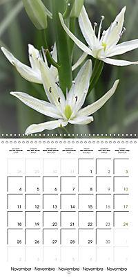 The White Garden (Wall Calendar 2019 300 × 300 mm Square) - Produktdetailbild 11
