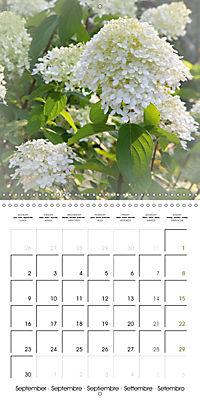 The White Garden (Wall Calendar 2019 300 × 300 mm Square) - Produktdetailbild 9