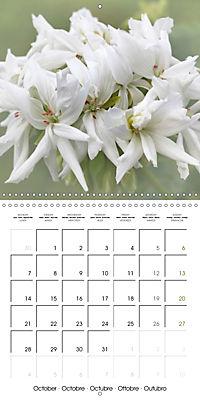 The White Garden (Wall Calendar 2019 300 × 300 mm Square) - Produktdetailbild 10