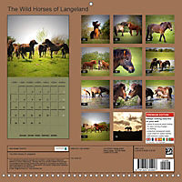The Wild Horses of Langeland (Wall Calendar 2019 300 × 300 mm Square) - Produktdetailbild 13
