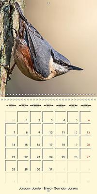 The Wildlife of England (Wall Calendar 2019 300 × 300 mm Square) - Produktdetailbild 1