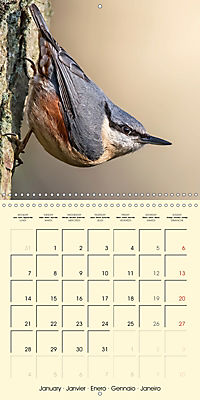 The Wildlife of England (Wall Calendar 2019 300 × 300 mm Square) - Produktdetailbild 1