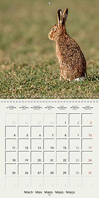 The Wildlife of England (Wall Calendar 2019 300 × 300 mm Square) - Produktdetailbild 3