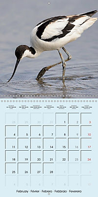 The Wildlife of England (Wall Calendar 2019 300 × 300 mm Square) - Produktdetailbild 2