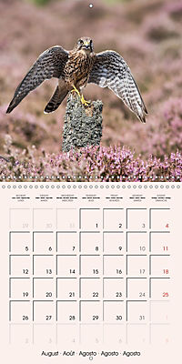 The Wildlife of England (Wall Calendar 2019 300 × 300 mm Square) - Produktdetailbild 8