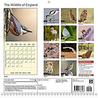 The Wildlife of England (Wall Calendar 2019 300 × 300 mm Square) - Produktdetailbild 13