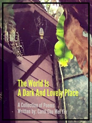 The World Is A Dark And Lovely Place, Carol Chu Mei Yin