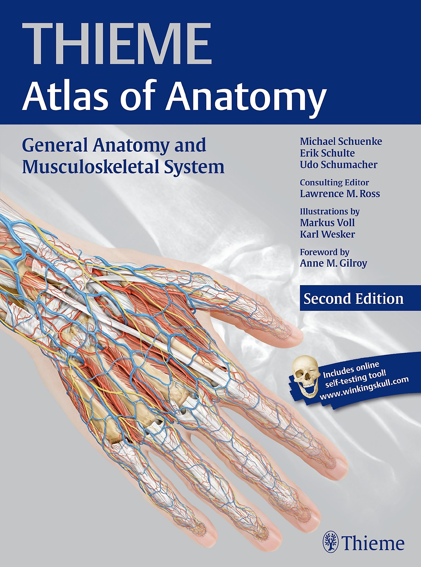 Thieme Atlas Of Anatomy General Anatomy And Musculoskeletal System