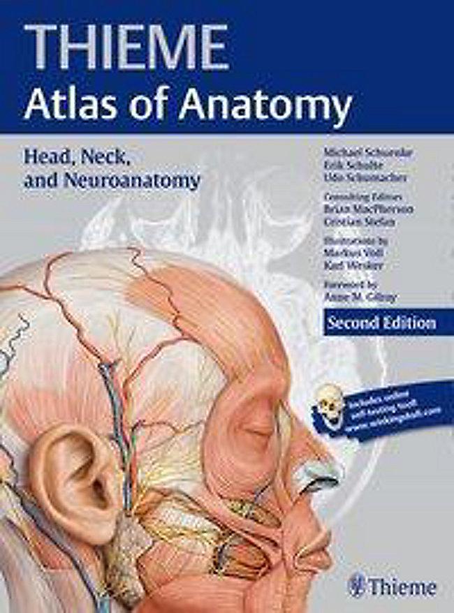 Thieme Atlas Of Anatomy Head Neck And Neuroanatomy Weltbild