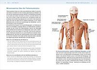 Tiefenmuskulatur-Training - Produktdetailbild 1
