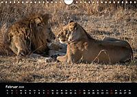 Tier-Momente in Afrika (Wandkalender 2019 DIN A4 quer) - Produktdetailbild 2
