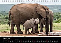 Tier-Momente in Afrika (Wandkalender 2019 DIN A4 quer) - Produktdetailbild 8