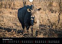 Tier-Momente in Afrika (Wandkalender 2019 DIN A4 quer) - Produktdetailbild 11