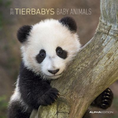 Tierbabys / Baby Animals 2019, ALPHA EDITION