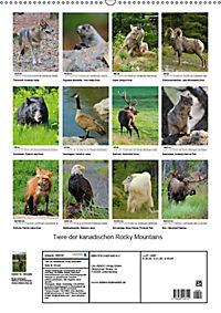 Tiere der kanadischen Rocky Mountains (Wandkalender 2019 DIN A2 hoch) - Produktdetailbild 13