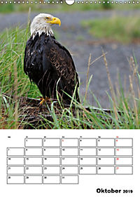 Tiere der kanadischen Rocky Mountains (Wandkalender 2019 DIN A3 hoch) - Produktdetailbild 10