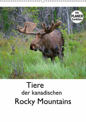 Tiere der kanadischen Rocky Mountains (Wandkalender 2019 DIN A2 hoch), Dieter-M. Wilczek
