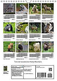 Tiere der kanadischen Rocky Mountains (Wandkalender 2019 DIN A4 hoch) - Produktdetailbild 13