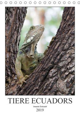 Tiere Ecuadors (Tischkalender 2019 DIN A5 hoch), Jeanette Dobrindt