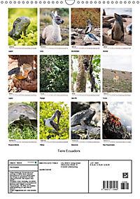 Tiere Ecuadors (Wandkalender 2019 DIN A3 hoch) - Produktdetailbild 13