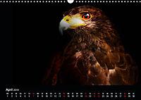 Tiere im Reich der Schatten (Wandkalender 2019 DIN A3 quer) - Produktdetailbild 4