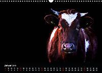 Tiere im Reich der Schatten (Wandkalender 2019 DIN A3 quer) - Produktdetailbild 1