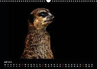 Tiere im Reich der Schatten (Wandkalender 2019 DIN A3 quer) - Produktdetailbild 7