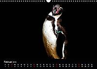 Tiere im Reich der Schatten (Wandkalender 2019 DIN A3 quer) - Produktdetailbild 2
