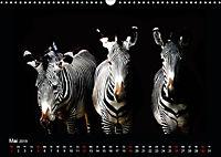 Tiere im Reich der Schatten (Wandkalender 2019 DIN A3 quer) - Produktdetailbild 5