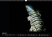 Tiere im Reich der Schatten (Wandkalender 2019 DIN A3 quer) - Produktdetailbild 6