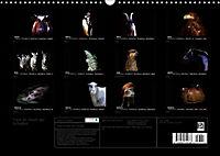 Tiere im Reich der Schatten (Wandkalender 2019 DIN A3 quer) - Produktdetailbild 13
