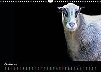 Tiere im Reich der Schatten (Wandkalender 2019 DIN A3 quer) - Produktdetailbild 10