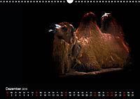 Tiere im Reich der Schatten (Wandkalender 2019 DIN A3 quer) - Produktdetailbild 12