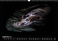 Tiere im Reich der Schatten (Wandkalender 2019 DIN A3 quer) - Produktdetailbild 9