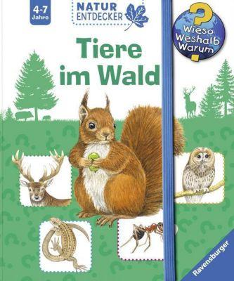 Tiere im Wald, Daniela Prusse, Christine Henkel