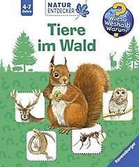 Tiere im Wald - Produktdetailbild 2