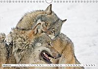 Tiere in Aktion (Wandkalender 2019 DIN A4 quer) - Produktdetailbild 1