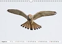 Tiere in Aktion (Wandkalender 2019 DIN A4 quer) - Produktdetailbild 8