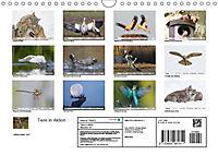 Tiere in Aktion (Wandkalender 2019 DIN A4 quer) - Produktdetailbild 13