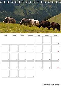 Tiere in Freiheit - Nutztiere auf der Alm (Tischkalender 2019 DIN A5 hoch) - Produktdetailbild 2