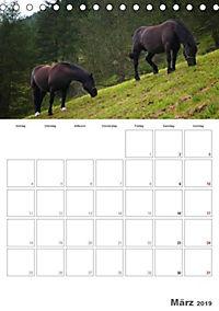 Tiere in Freiheit - Nutztiere auf der Alm (Tischkalender 2019 DIN A5 hoch) - Produktdetailbild 3