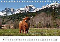Tiere in Freiheit - Nutztiere auf der Alm (Tischkalender 2019 DIN A5 quer) - Produktdetailbild 6