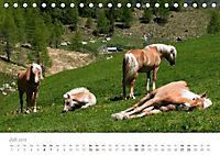 Tiere in Freiheit - Nutztiere auf der Alm (Tischkalender 2019 DIN A5 quer) - Produktdetailbild 7