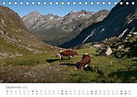 Tiere in Freiheit - Nutztiere auf der Alm (Tischkalender 2019 DIN A5 quer) - Produktdetailbild 9